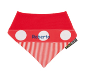 Red Q22 Personalised Dribbler